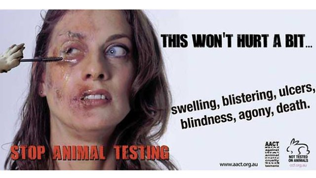 Animal Testing in Beauty Industry-Mac, Lancome, Estee Lauder and more
